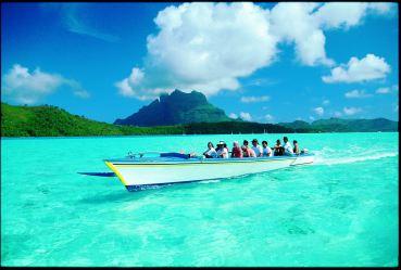 Shark_Boat
